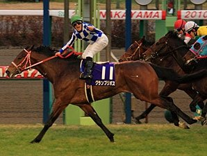 Grand Prix Boss Captures Asahi Hai Futurity