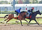 Final Derby Tuneup for Danzig Moon
