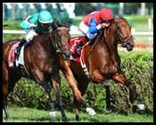 Nunatall Takes It All in Saratoga Feature