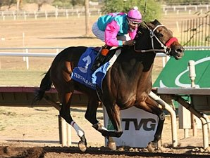 World Mark for 6 Panels Set at Turf Paradise