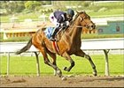 Golden Shine Races Into Triple Crown Picture