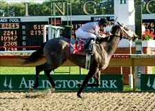 Dreaming of Liz Mirrors Stablemate in Arlington's Lassie
