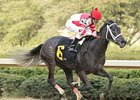 Arkansas Derby Draws 110 Nominations