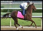 Nafzger Pair Work  Toward Oaks