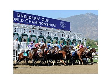 144 3 Million Wagered On Breeders Cup Races Bloodhorse