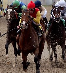 Kentucky Derby Trail: Gung Ho
