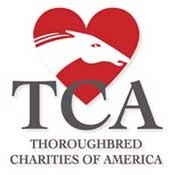 TCA Board Approves Over $1.5 million in '07 Grants