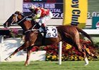 Hong Kong's Horse of the Year Upset