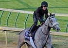 Winter Memories a Special Breeders' Cup Filly