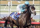 'Daddy Just Dandy in Florida Derby