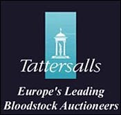 Tattersalls Concludes Banner Year With Successful December Sale