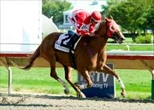 Solo Survivor Skims Rail in Matron Handicap