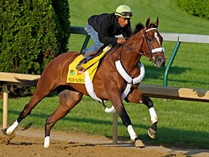 Solid Work for Mucho Macho Man