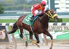 Grade I Winner Giant Ryan Euthanized