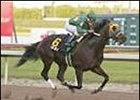 Cajun Beat Keeps it Going in Mr. Prospector