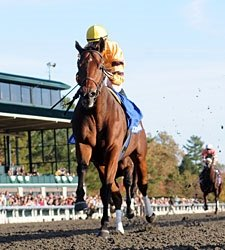 Successful Dan Romps in Closing Day Fayette