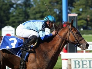 Park Avenue Ball Retired