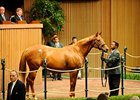 Keeneland Sale Off to Solid Start