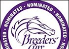 Breeders' Cup Foal Nominations of 16,272 a Record