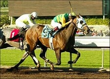 Spunky Going Wild Wins Sham for Lukas