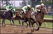 Posse Lassoes Lafayette Stakes