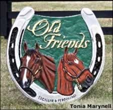 Old Friends Gets TV Exposure, Retirement Plan