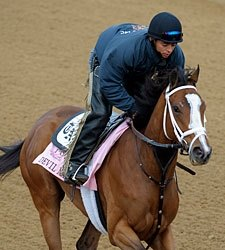 Derby a Possibility For Filly Devil May Care