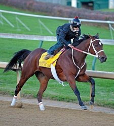 'Grace' Works Five Furlongs in Final Prep