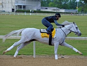 Hansen Works Easy 5 Furlongs in Company