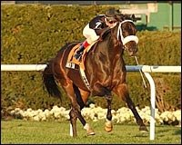 Balto Star Headlines Meadowlands Cup