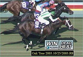 Turf Has First Breeders Cup Dead Heat Bloodhorse Com