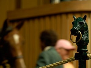 Rebound Unlikely During Keeneland Auction