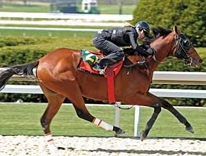 Keeneland Sale Features 212 Juveniles
