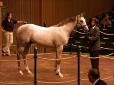 Average, Median Rise During Day Three of Keeneland Sale