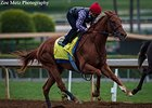 Dortmund Runs Easy in Final Derby Drill