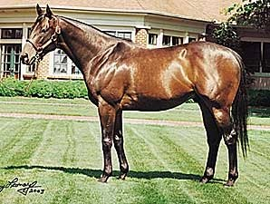 King Cugat to Liberty Stud