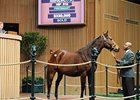 Princess Janie Goes for $330,000 at Keeneland