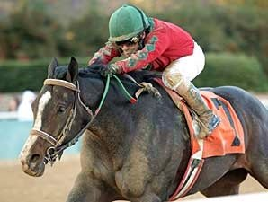 Flat Out The Best in Smarty Jones Stakes