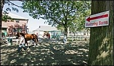 Race-Day Security Barns in Effect for Breeders' Cup