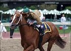 India Cruises to Victory in Cotillion Handicap