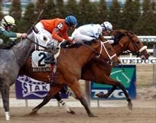 Smokey Glacken Wins Again in Big A's Distaff
