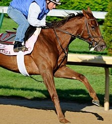 Arienza Works Bullet, Questionable for Oaks