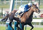Master David Displays Derby Readiness; Lion Heart Works