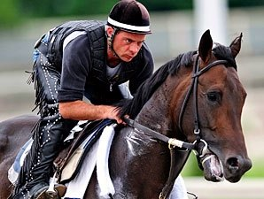 Belmont Winner Da' Tara in Light Training