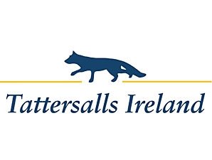 Tattersalls Ireland Sale Wraps Up