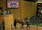 Awesome Again Colt Goes for $1.35 Million