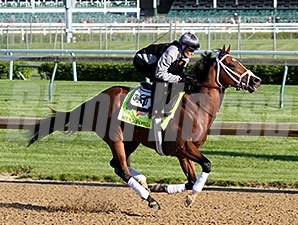 Stanford at Churchill Downs 4.28.15.