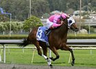 Cathy's Crunches Heads California Oaks Cast
