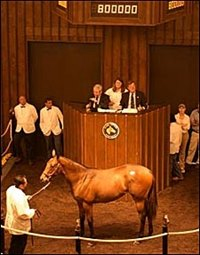 Fu Peg Filly Tops Fasig-Tipton Opener