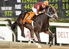 Big Drama Headed to Holy Bull Stakes